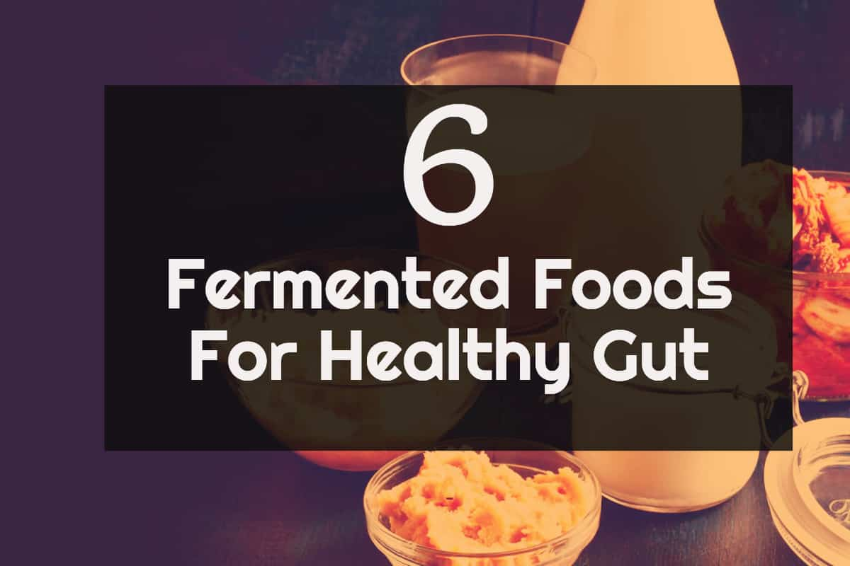 Best Fermented Foods For A Healthy Gut Infographic