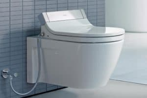 best wall mounted toilet 1